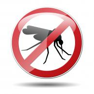 Who can I call to get Mosquito Spraying?
