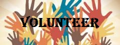 Social Committee Volunteer