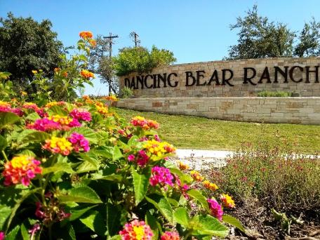 Dancing Bear Property Owners Association